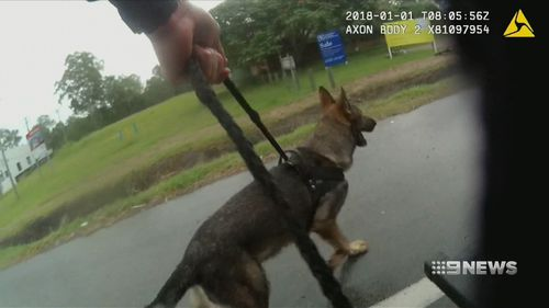 Rippa follows the scent to catch the drink driver. (9NEWS)