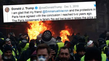 US president Donald Trump has mocked French leader Emmanuel Macron on Twitter, blaming the riots in Paris on France's commitment to a global climate agreement.