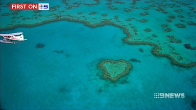 Great Barrier Reef 'struggling' amid bleak climate change outlook