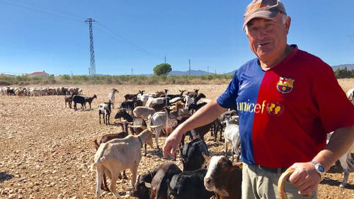 Farmer Fernando is among Catalans who don't support making the region independent.