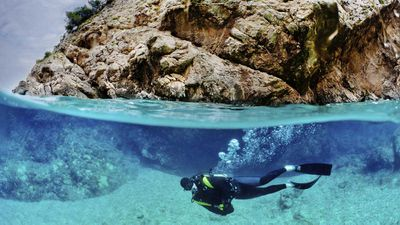 Swap swimming for scuba diving