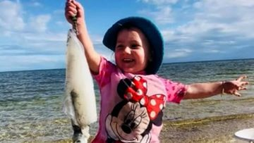 Cleo Smith was last seen at 1.30am on Saturday in a tent she was sleeping in with her parents at the Blowholes campsite in Macleod, Western Australia.
