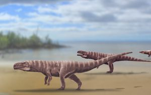 Scientists discover crocodiles may have once walked on their hind legs