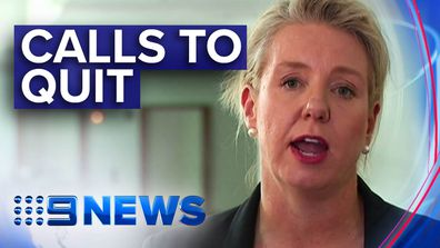 Bridget McKenzie faces calls to resign amid sports grants for seats
