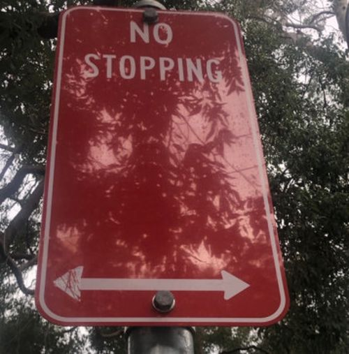 A NSW Central Coast woman was slugged with a parking fine because someone painted an arrow on a no stopping sign.