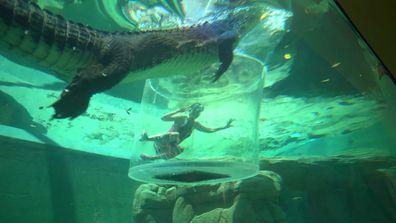 Lauren Phillips Crocosaurus Cove Getaway