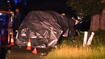 Three people died when the SUV they were in hit a tree on the NSW mid-north coast.