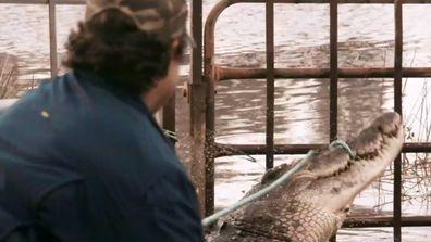 Monster crocodile wrestler, Matt Wright, has a message