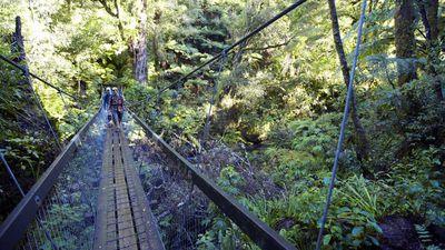 New Zealand's top 10 great walks