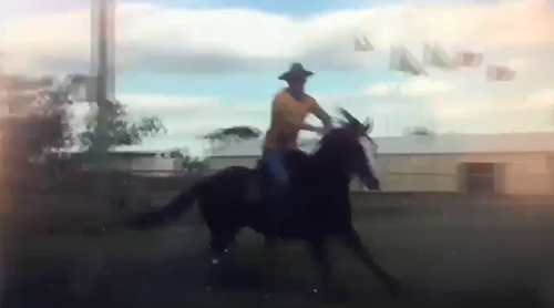 Police have arrested a man who allegedly knocked over a woman while he was riding a horse at an anti-Adani protest in central Queensland on the weekend.