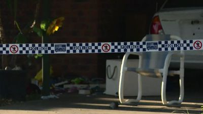 Teen charged over frenzied stabbing
