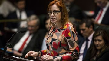 NSW member for Granville Julia Finn during Question Time in the NSW State Parliament in 2018.