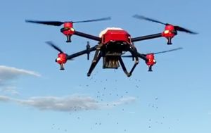 St Patricks Day bushfires: drones used to rehabilitate Victoria's fire-ravaged landscape