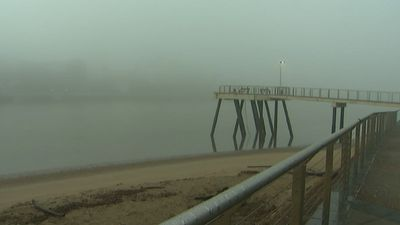 The fog rolled into the south-east of the state in the early morning. (9NEWS)
