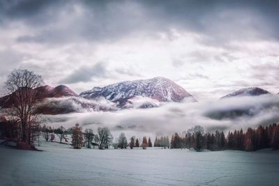 Second Place, Infrared Landscape