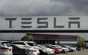 Elon Musk champions businesses defying US shutdown orders