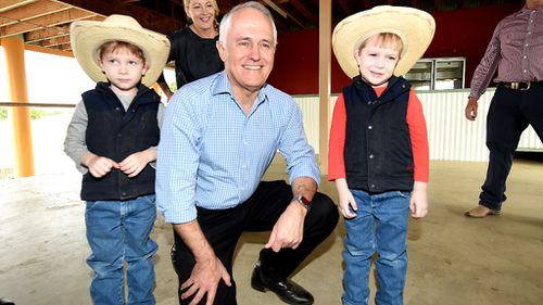 Malcolm Turnbull at a sweet potato farm in Central Queensland yesterday. (AAP)