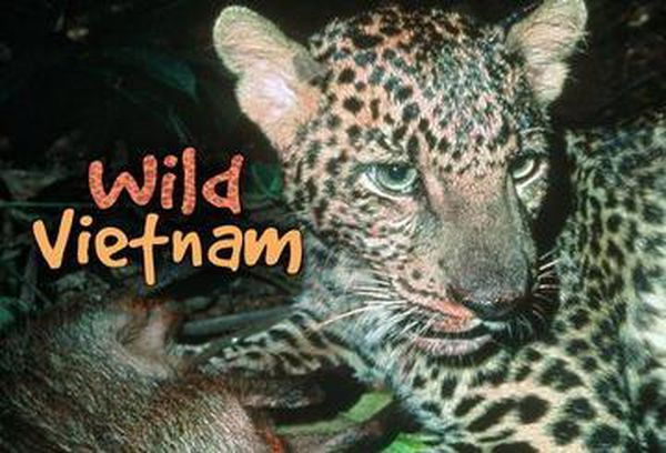 Wild Vietnam
