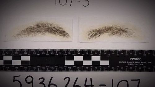 Ryan Watsford's eyebrows.