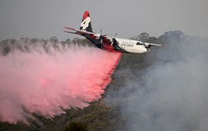 Water contamination fears from NSW bushfire flame retardant