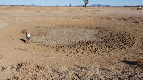 More than 15 percent of NSW is in intense drought. (Facebook)