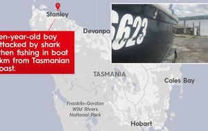 Tasmanian boy's life jacket and brave dad saved him from huge 'great white'