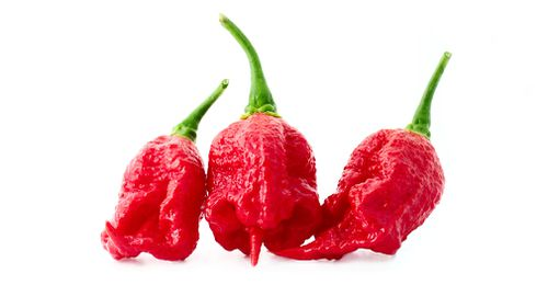 Medical doctors believe the condition, known as RCVS, has never before been linked to the consumption of chilli peppers such as the Carolina Reaper. Picture: Getty.