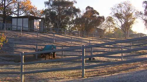Billie is believed to have been leading her mother's horse back to a stable when she was thrown from it. (9NEWS)