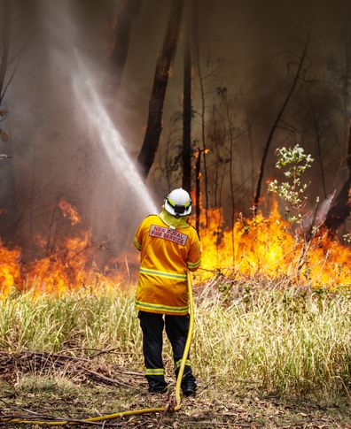 A New South Wales (NSW) Rural Fire Service volunteer douses a fire during back-burning operations in bushland near the town of Kulnura, New South Wales, Australia, on Thursday, Dec. 12, 2019. Photographer: David Gray/Bloomberg