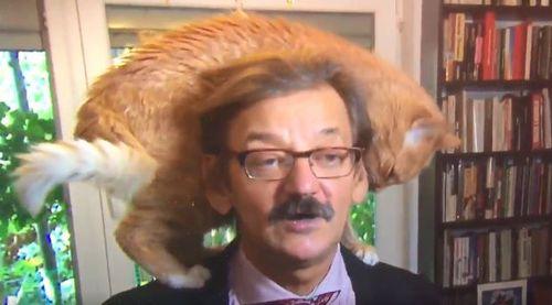 Mr Targalski's cat stole the show when he was interviewed last week. Image: Twitter