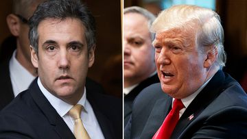 Donald Trump's former lawyer Michael Cohen paid a data firm to manipulate online polling data, saying he did it at Mr Trump's direction and for his sole benefit.