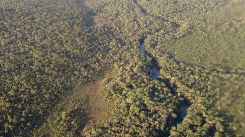 Mr Keys spent hours stumbling through the thick bush land of Jardine National Park in north Queensland.(Motopangaea.com)