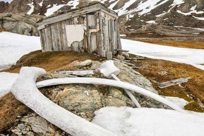 Whaler's Hut in Svalbard