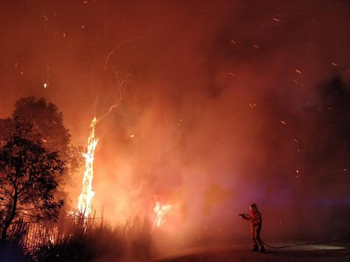 Firefighters are tirelessly battling a bushfire in Peregian Springs on the Sunshine Coast.