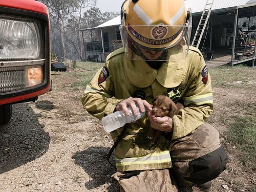 Fire crews are working around the clock to tackle numerous blazes across Queensland's central coast.