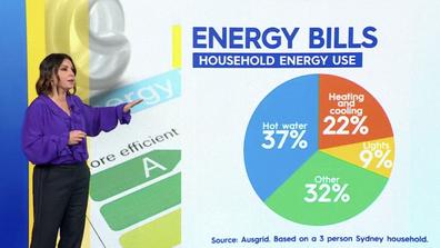 Effie Zahos broke down the average household energy use.
