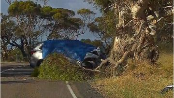 A man has died after crashing into a tree south-east of Adelaide this morning.