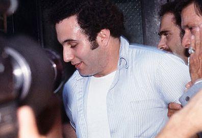 David Berkowitz (Getty)