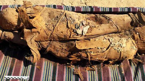 About 30 mummies were found in the tomb.