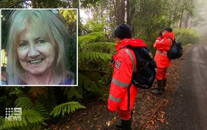 Son 'terrified' for grandmother who vanished after late-night walk