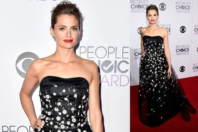 <i>Castle</i> star Stana Katic rocking a traditional floor-length gown for the lavish affair.