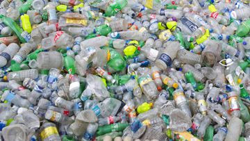 2018 file photo of plastic bottles in a recycling factory in Dhaka, Bangladesh.