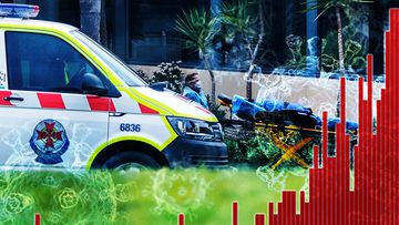 Victoria records 19 deaths and 331 new COVID-19 cases