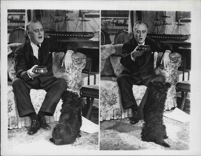 Franklin D. Roosevelt: Fala