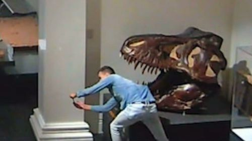 The man was filmed taking photos with exhibits as he wandered through the museum.