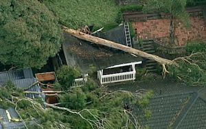 Thousands of homes still without power in Victoria after wild storms swept through the state