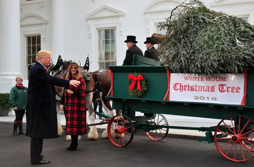 US President Donald Trump and First Lady Melania Trump receive the White House Christmas Tree.