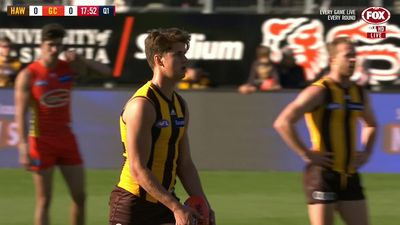 Hawthorn Hawks scrap win over Gold Coast Suns to stay in AFL top-eight mix