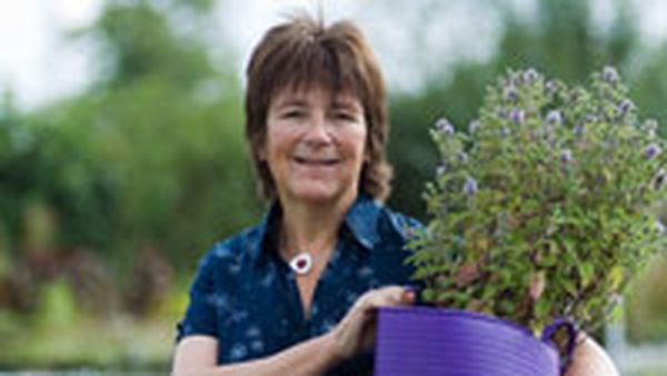 'Queen of herbs', Jekka McVicar