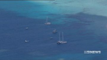 French tourists die while snorkelling on Great Barrier Reef